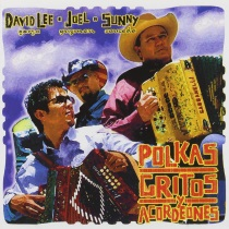 Garza, David Lee, Joel Guzman, and Sunny Sauceda - Polkas, Gritos y Accordeones