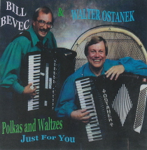 Ostanek and Bevec - Just for You
